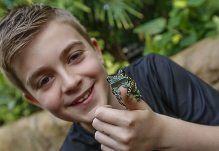Thomas holding a frog